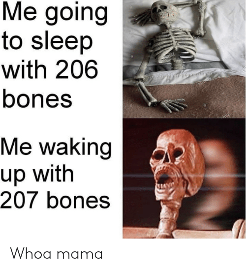 Bones, Sleep, and Mama: Me going  to sleep  with 206  bones  alar  Sammy  alawy  Me waking  up with  207 bones Whoa mama