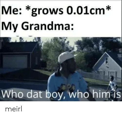 dat: Me: *grows 0.01cm*  My Grandma:  Who dat boy, who him is meirl