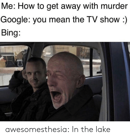 Google, Tumblr, and Bing: Me: How to get away with murder  Google: you mean the TV show :)  Bing: awesomesthesia:  In the lake