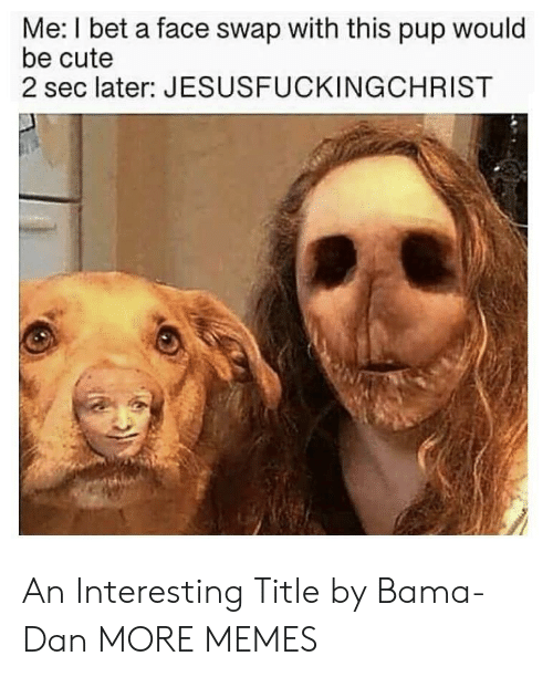 Cute, Dank, and I Bet: Me: I bet a face swap with this pup would  be cute  2 sec later: JESUSFUCKINGCHRIST An Interesting Title by Bama-Dan MORE MEMES