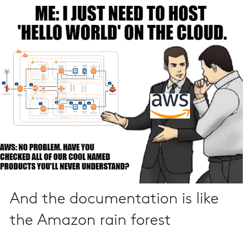 the cloud: ME: I JUST NEED TO HOST  HELLO WORLD' ON THE CLOUD.  aws  AWS: NO PROBLEM. HAVE YOU  CHECKED ALL OF OUR COOL NAMED  PRODUCTS YOU'LL NEVER UNDERSTAND? And the documentation is like the Amazon rain forest