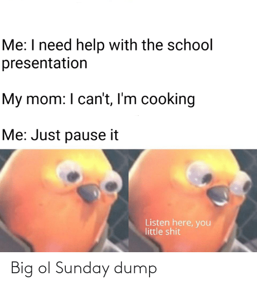 The School: Me: I need help with the school  presentation  My mom: I can't, I'm cooking  Me: Just pause it  Listen here, you  little shit Big ol Sunday dump