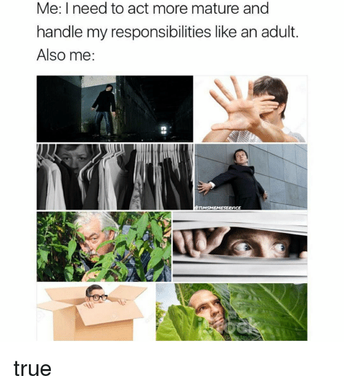 Maturely: Me: I need to act more mature and  handle my responsibilities like an adult.  Also me:  MSAMEMESERVICE true