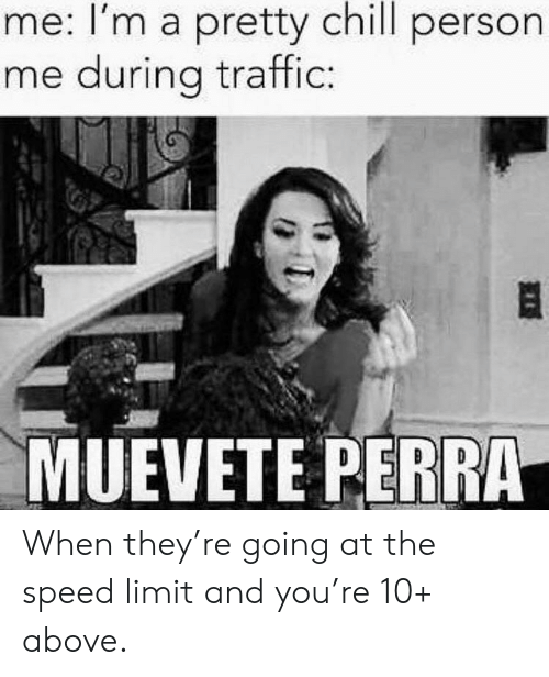 perra: me: I'm a pretty chill person  me during traffic  MUEVETE PERRA When they're going at the speed limit and you're 10+ above.