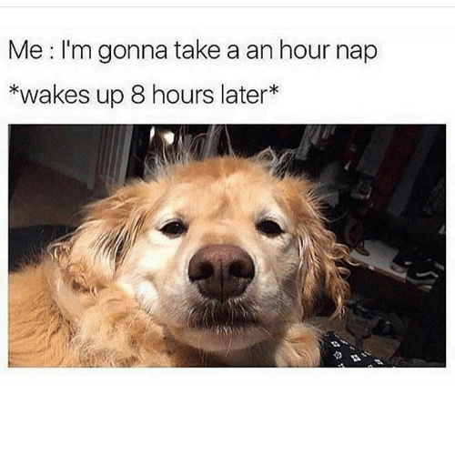 8 Hours Later: Me I'm gonna take a an hour nap  *wakes up 8 hours later