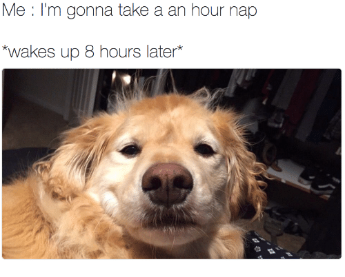 8 Hours Later: Me I'm gonna take a an hour nap  wakos up 8 hours later