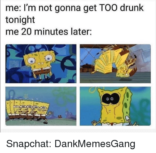 Drunk, Memes, and Snapchat: me: I'm not gonna get TOO drunk  tonight  me 20 minutes later: Snapchat: DankMemesGang