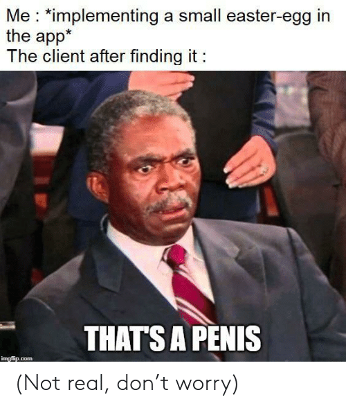 Easter, Penis, and Com: Me *implementing a small easter-egg in  the app*  The client after finding it  THATS A PENIS  imgflip.com (Not real, don't worry)