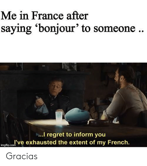 gracias: Me in France after  saying 'bonjour' to someone..  I regret to inform you  I've exhausted the extent of my French  imgflip.com Gracias