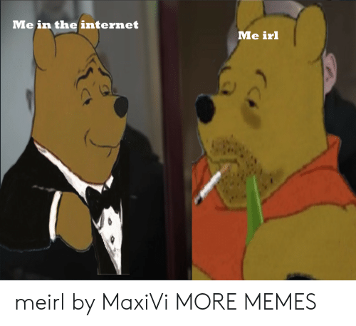 Dank, Internet, and Memes: Me in the internet  Me irl meirl by MaxiVi MORE MEMES