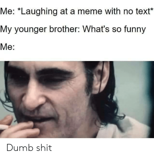 "So Funny: Me: ""Laughing at a meme with no text  My younger brother: What's so funny  Me: Dumb shit"