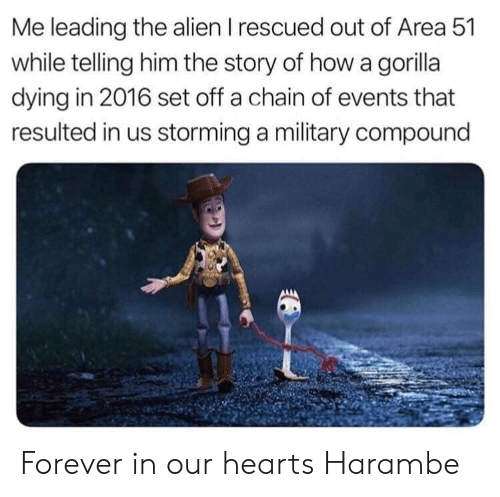 In 2016: Me leading the alien I rescued out of Area 51  while telling him the story of how a gorilla  dying in 2016 set off a chain of events that  resulted in us storming a military compound Forever in our hearts Harambe