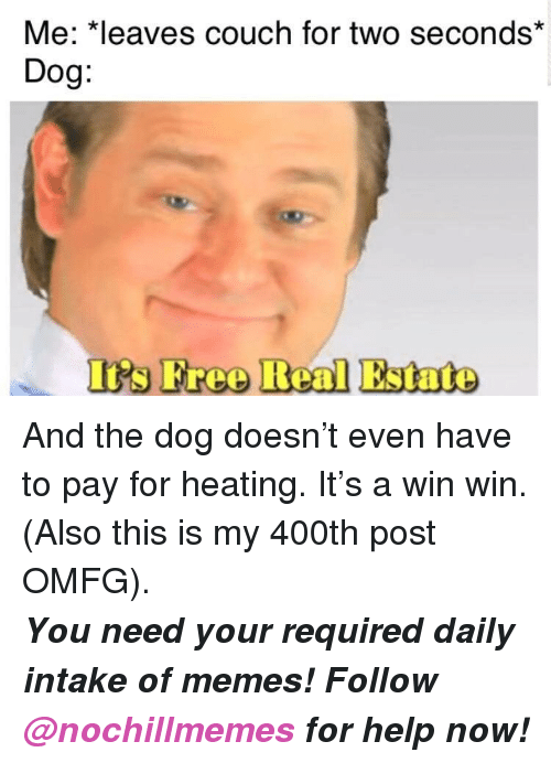 Memes, Couch, and Free: Me: *leaves couch for two seconds*  Dog:  Is Free Real Estate <p>And the dog doesn't even have to pay for heating. It's a win win. (Also this is my 400th post OMFG).</p><p><b><i>You need your required daily intake of memes! Follow <a>@nochillmemes</a> for help now!</i></b><br/></p>