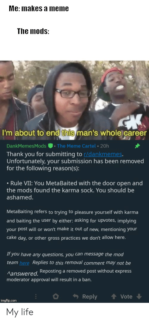 Life, Meme, and Thank You: Me: makes a meme  The mods:  I'm about to end this man's whole career  . The Meme Cartel 20h  DankMemesMods  Thank you for submitting to r/dankmemes.  Unfortunately, your submission has been removed  for the following reason(s):  Rule VII: You MetaBaited with the door open and  the mods found the karma sock. You should be  ashamed  MetaBaiting refers to trying to pleasure yourself with karma  and baiting the user by either: asking for upvotes, implying  your post will or won't make it out of new, mentioning your  cake day, or other gross practices we don't allow here.  If you have any questions, you can message the mod  team here Replies to this removal comment may not be  Manswered.Reposting a removed post without express  moderator approval will result in a ban.  Reply  Vote  imgflip.com My life
