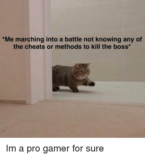 Pro, Boss, and Gamer: Me marching into a battle not knowing any of  the cheats or methods to kill the boss Im a pro gamer for sure