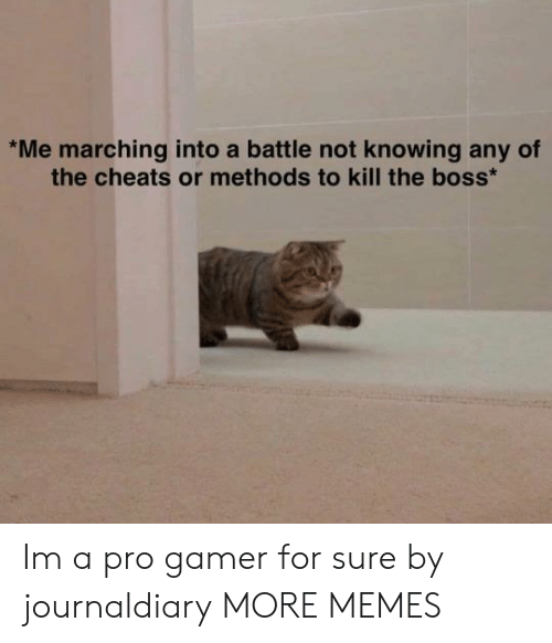 Dank, Memes, and Target: Me marching into a battle not knowing any of  the cheats or methods to kill the boss Im a pro gamer for sure by journaldiary MORE MEMES