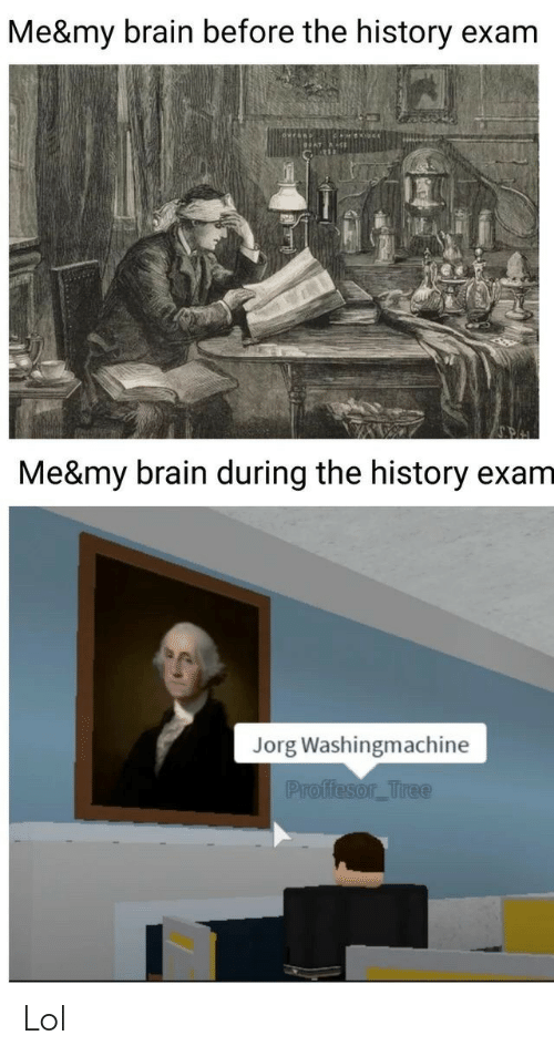 Me My: Me&my brain before the history exam  Me&my brain during the history exam  Jorg Washingmachine  Proffesor_Tree Lol
