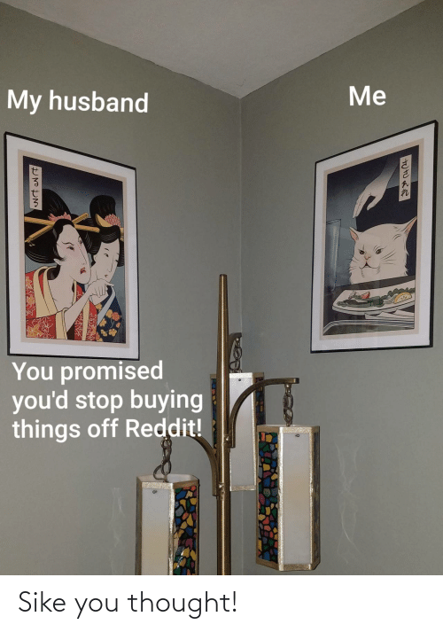Promised: Me  My husband  You promised  you'd stop buying  things off Reddit! Sike you thought!