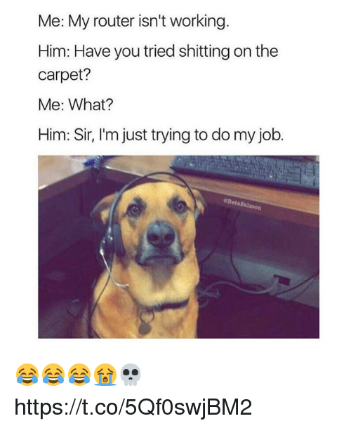 Funny, Router, and Job: Me: My router isn't working.  Him: Have you tried shitting on the  carpet?  Me: What?  Him: Sir, I'm just trying to do my job.  28 😂😂😂😭💀 https://t.co/5Qf0swjBM2