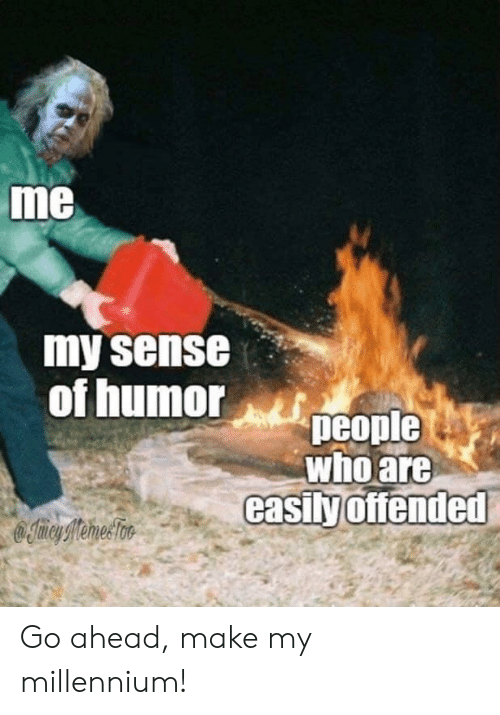 Memes, Reddit, and Who: me  my sense  of humor  people  who are  casily offended  Iimey Memes Too Go ahead, make my millennium!