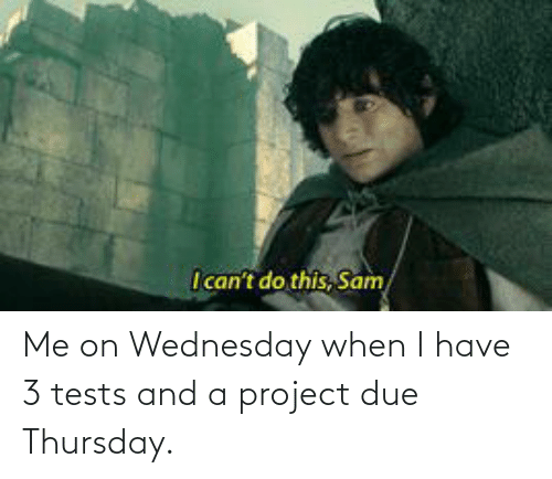 Wednesday: Me on Wednesday when I have 3 tests and a project due Thursday.