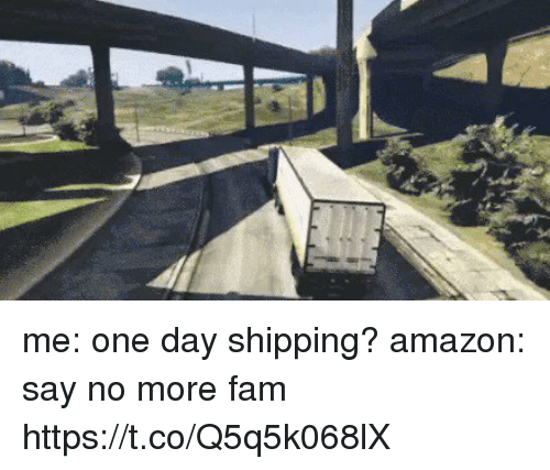 amazone: me: one day shipping?  amazon: say no more fam https://t.co/Q5q5k068lX