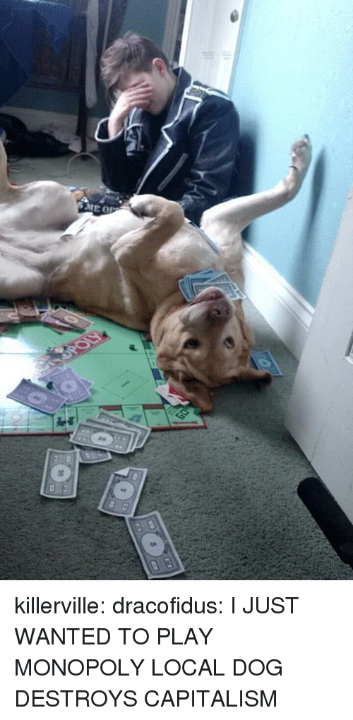 Monopoly, Tumblr, and Blog: ME OP killerville: dracofidus:  I JUST WANTED TO PLAY MONOPOLY  LOCAL DOG DESTROYS CAPITALISM
