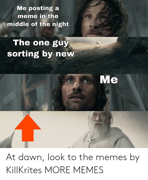 Dank, Meme, and Memes: Me posting a  meme in the  middle of the night  The one guy  sorting by new  Me At dawn, look to the memes by KillKrites MORE MEMES