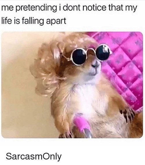 Funny, Life, and Memes: me pretending i dont notice that my  life is falling apart SarcasmOnly