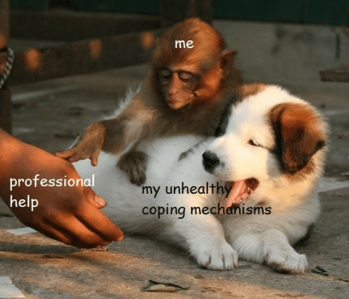 professional: me  professional  my unhealthy  coping mechanisms