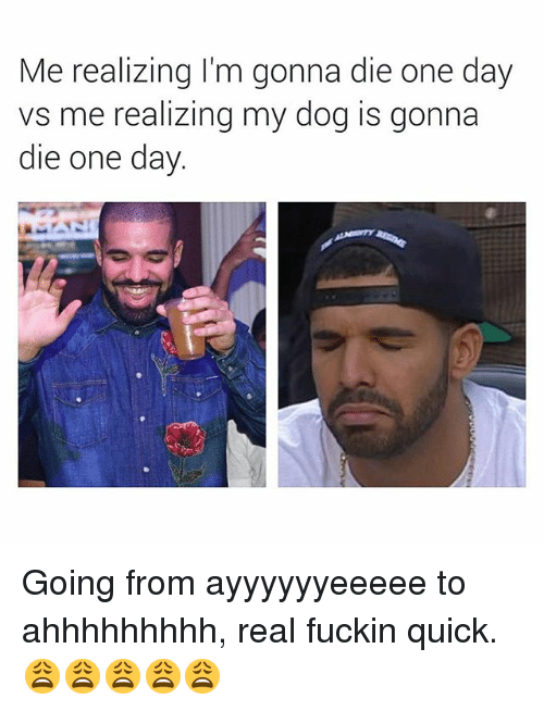 Im Gonna Die: Me realizing I'm gonna die one day  vs me realizing my dog is gonna  die one day Going from ayyyyyyeeeee to ahhhhhhhhh, real fuckin quick. 😩😩😩😩😩