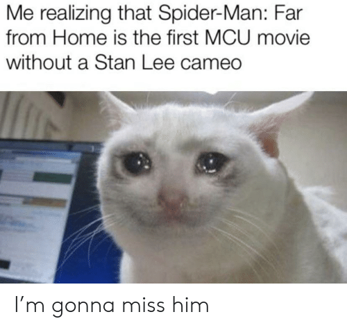 Spider, SpiderMan, and Stan: Me realizing that Spider-Man: Far  from Home is the first MCU movie  without a Stan Lee cameo I'm gonna miss him