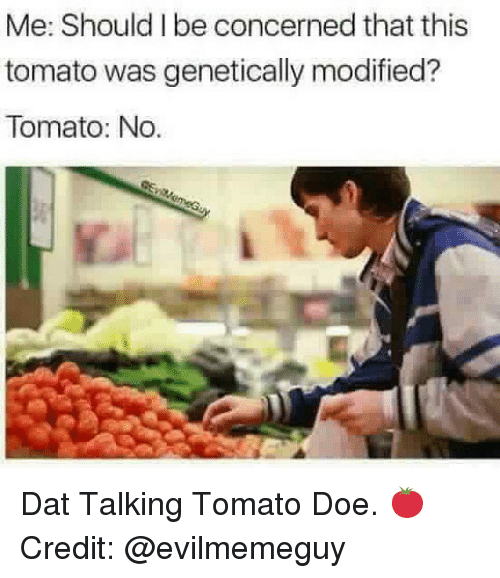 Credited: Me: Should I be concerned that this  tomato was genetically modified?  Tomato: No. Dat Talking Tomato Doe. 🍅 Credit: @evilmemeguy