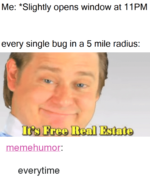 """Tumblr, Blog, and Http: Me: *Slightly opens window at 11PM  every single bug in a 5 mile radius:  I's Freo Real Estate <p><a href=""""http://memehumor.net/post/172720939398/everytime"""" class=""""tumblr_blog"""">memehumor</a>:</p>  <blockquote><p>everytime</p></blockquote>"""