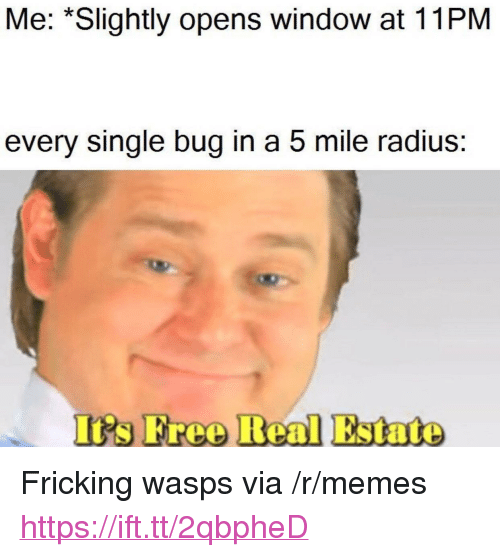 """Memes, Free, and Real Estate: Me: *Slightly opens window at 11PM  every single bug in a 5 mile radius:  Is Free Real Estate <p>Fricking wasps via /r/memes <a href=""""https://ift.tt/2qbpheD"""">https://ift.tt/2qbpheD</a></p>"""
