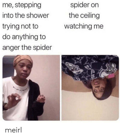 Shower, Spider, and MeIRL: me, stepping  spider on  the ceiling  into the shower  trying not to  do anything to  watching me  anger the spider meirl