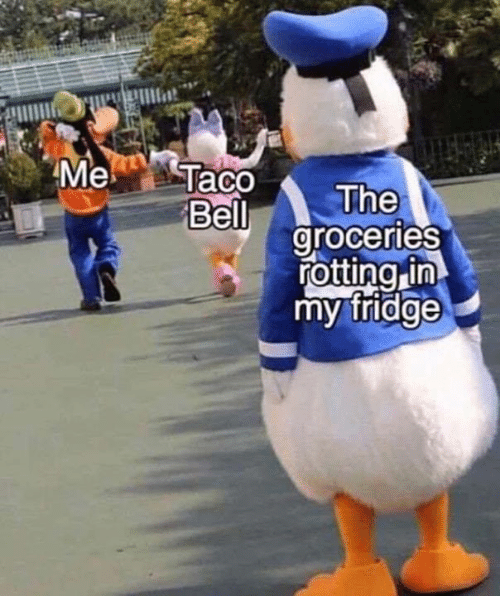 Memes, 🤖, and Fridge: Me  Taco  The  Bell  groceries  rotting in  my fridge