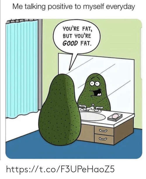 Memes, Good, and Fat: Me talking positive to myself everyday  YOU'RE FAT,  BUT YOU'RE  GOOD FAT. https://t.co/F3UPeHaoZ5