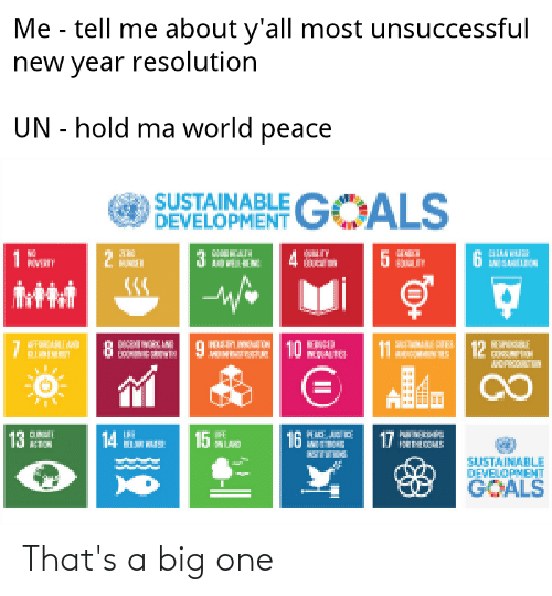 New Year Resolution: Me - tell me about y'all most unsuccessful  new year resolution  UN - hold ma world peace  SUSTAINABLE GOALS  DEVELOPMENT  10  12  11  15 A  16  17  SUSTAINABLE  DEVELOPMEHT  GOALS That's a big one