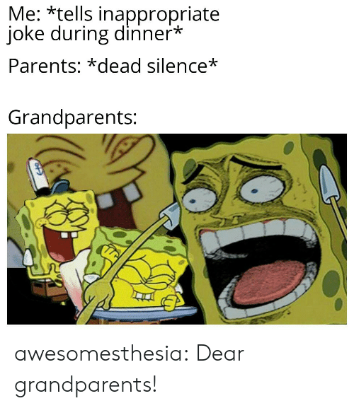 Parents, Tumblr, and Blog: Me: *tells inappropriate  joke during dinner*  Parents: *dead silence*  Grandparents: awesomesthesia:  Dear grandparents!