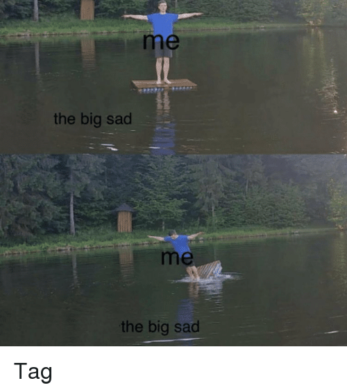 Memes, Sad, and 🤖: me  the big sac  me  the big sad Tag