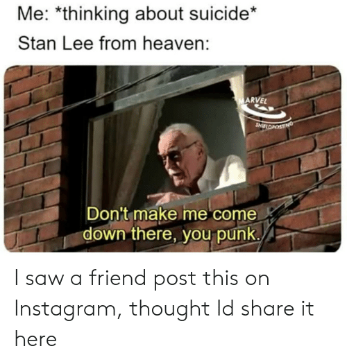Me Come: Me: *thinking about suicide*  Stan Lee from heaven:  ARVEL  Don't make me come  down there, you punk. I saw a friend post this on Instagram, thought Id share it here