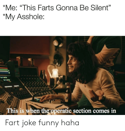 """Funny, Asshole, and Haha: *Me: """"This Farts Gonna Be Silent""""  """"My Asshole:  This is when the operatic section comes in Fart joke funny haha"""