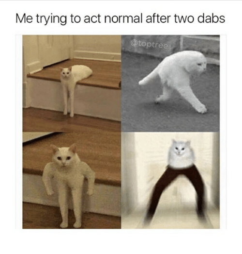The Dab, Act, and Normal: Me trying to act normal after two dabs  toptree