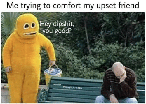 Good, Friend, and Hey: Me trying to comfort my upset friend  Hey dipshit,  ou good?  SgoodgirLbadtimes