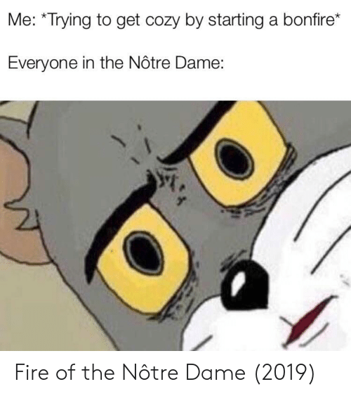 starting a: Me: *Trying to get cozy by starting a bonfire*  Everyone in the Nôtre Dame: Fire of the Nôtre Dame (2019)