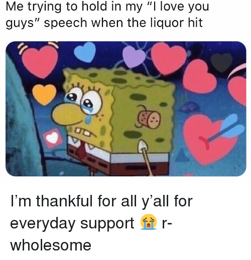 "Love, Memes, and I Love You: Me trying to hold in my ""I love you  guys"" speech when the liquor hit I'm thankful for all y'all for everyday support 😭 r-wholesome"