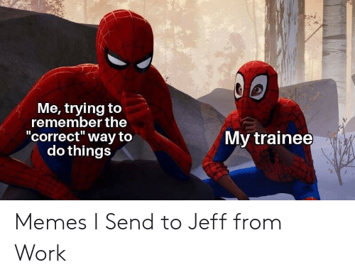 """Memes, Work, and Remember: Me, trying to  remember the  """"correct"""" way to  do things  II  My trainee Memes I Send to Jeff from Work"""