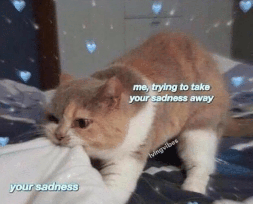 Sadness, Away, and Your: me, trying to take  your sadness away  your sadness