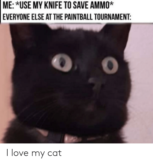 Tournament: ME: *USE MY KNIFE TO SAVE AMMO*  EVERYONE ELSE ATTHE PAINTBALL TOURNAMENT: I love my cat